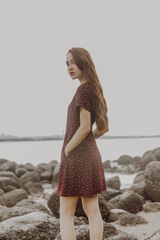 POLKADOT SWING DRESS (WINE RED)